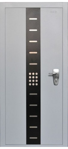 Двери Форпост /  Входная дверь EVOLUTION (Пандор Эвалюшн)